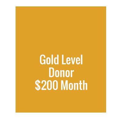 Gold Levele Donor