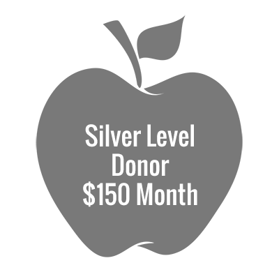 Silver Level Donor